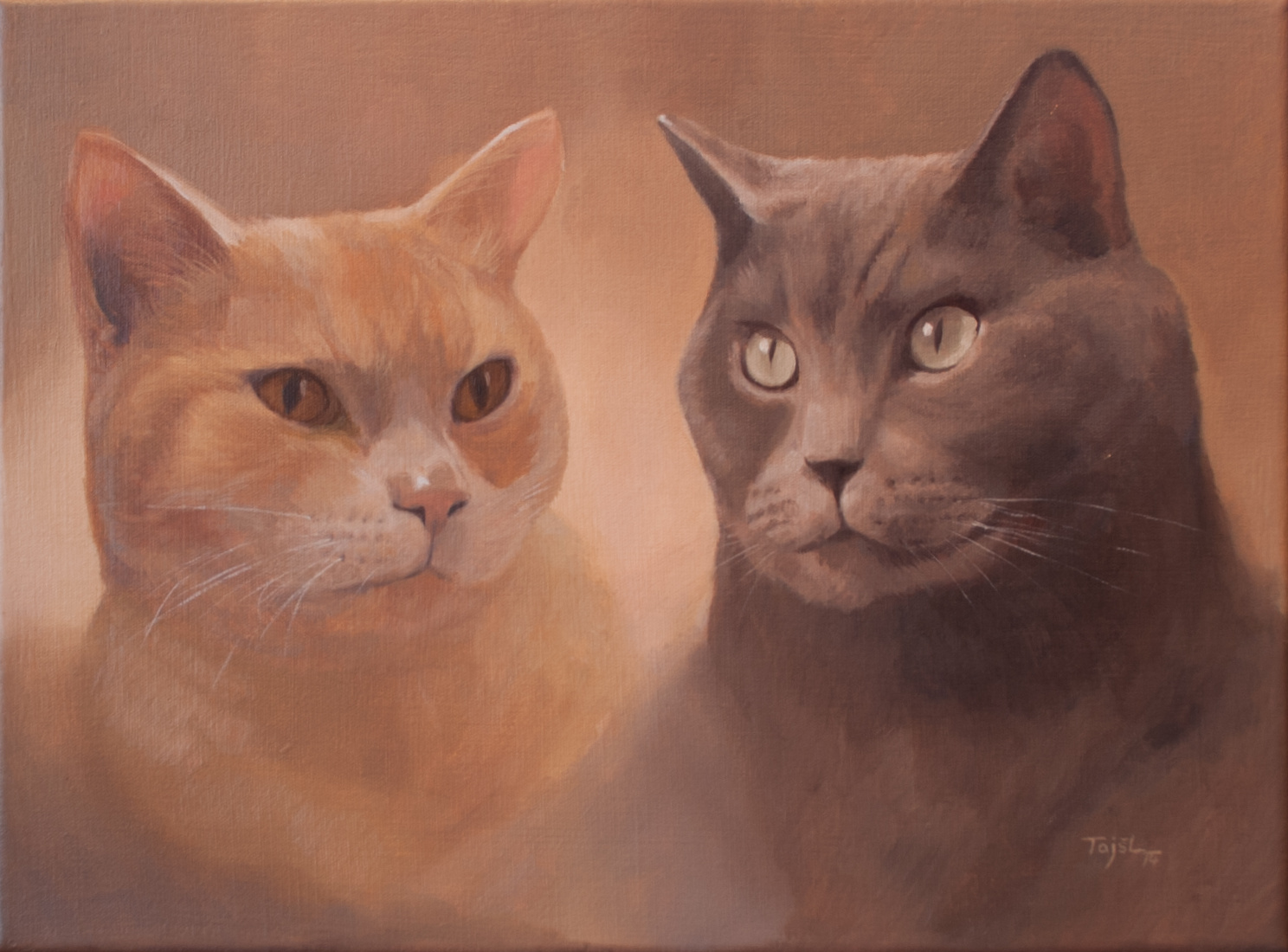 portrét koček